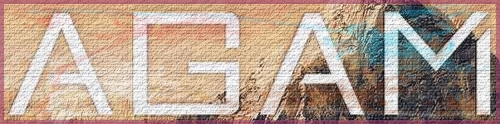 62 - Logo Ag AM.jpg