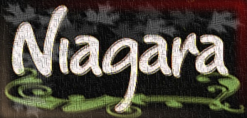 1 - Logo Niagara.jpg