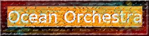 46b - Logo Ocean Orchestra.jpg