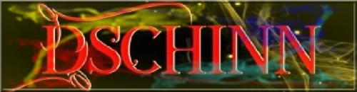 11 - Logo Dschinn.jpg
