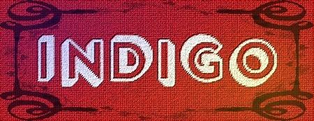 10 - Logo Indigo.jpg
