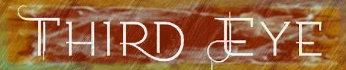 27 - Logo Third Eye.jpg
