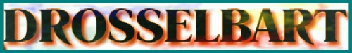 53 - Logo.jpg