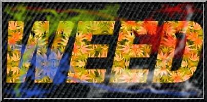 15 - Logo Weed.jpg