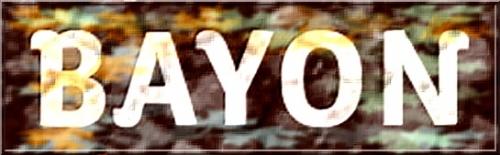 78 - Logo Bayon.jpg